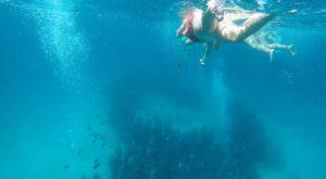 Snorkel MUSA Isla Mujeres, Mexico