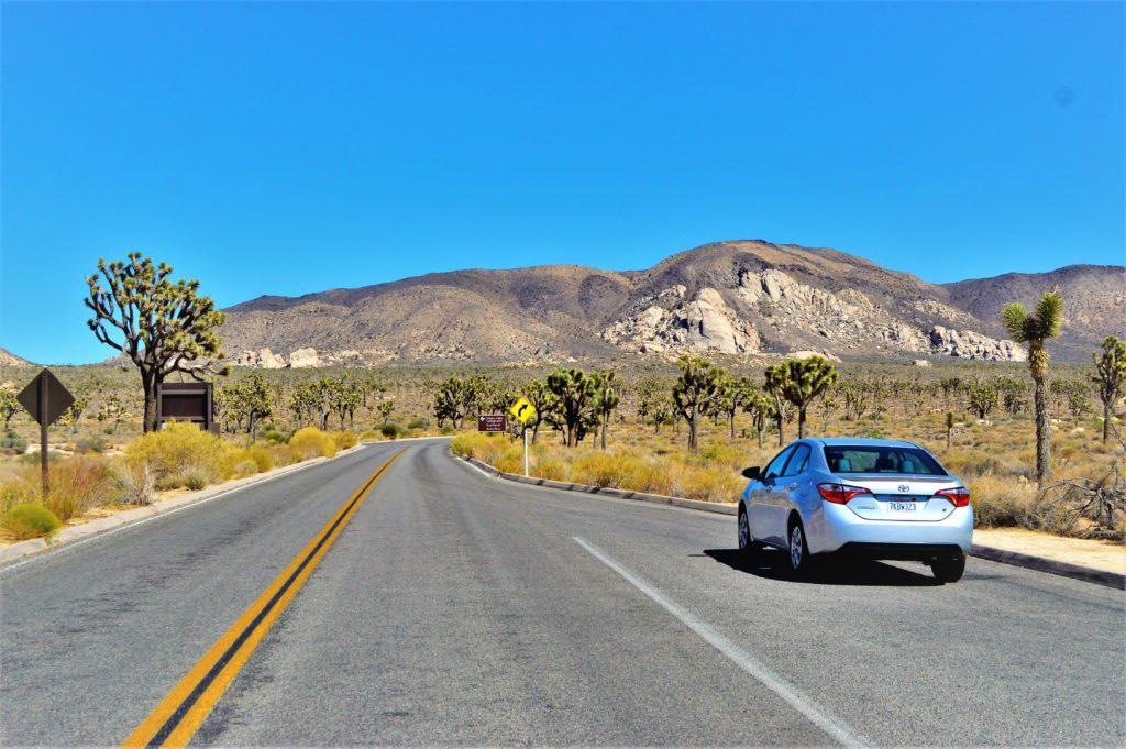 Car rental, Joshua Tree National Park, California
