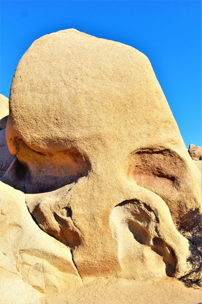 Joshua Tree National Park's Skull Rock