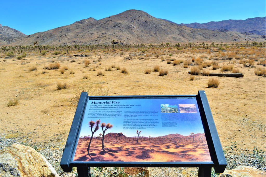 Memorial Fire Sign, Joshua Treet national Park, California
