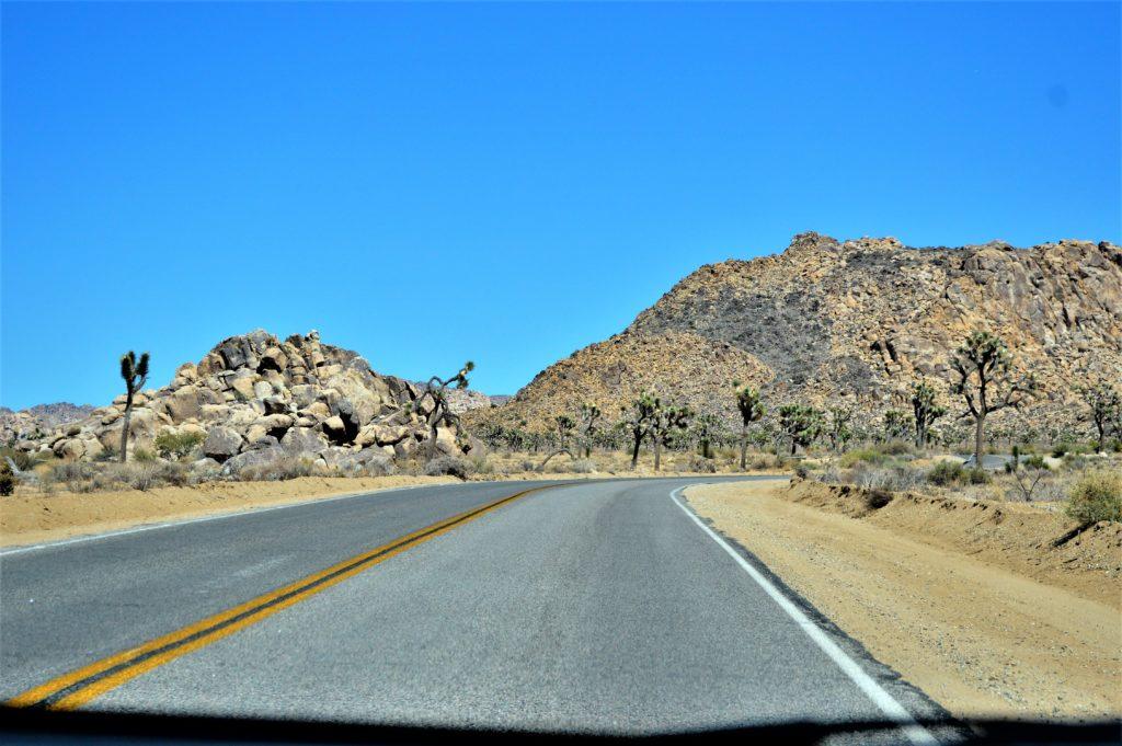 Road trip, Joshua Tree National Park