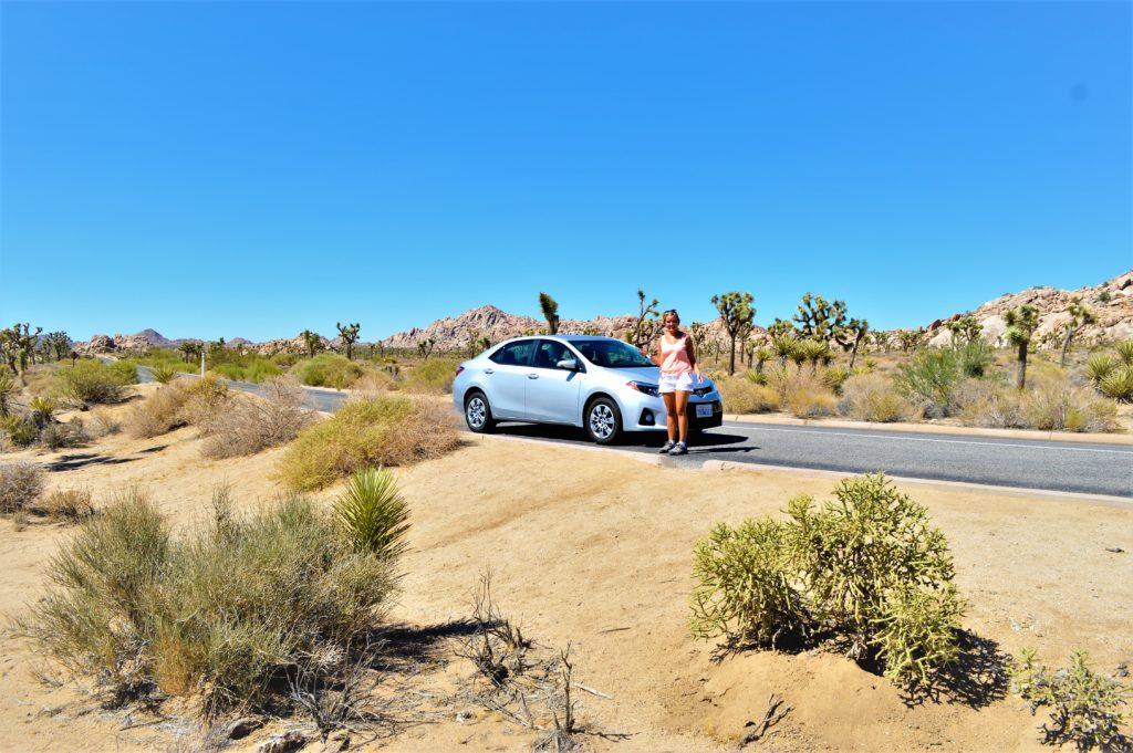 Road trip to Joshua Treet National Park, California
