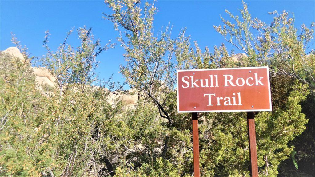 Skull Rock Trail sign, Joshua Tree National Park, US