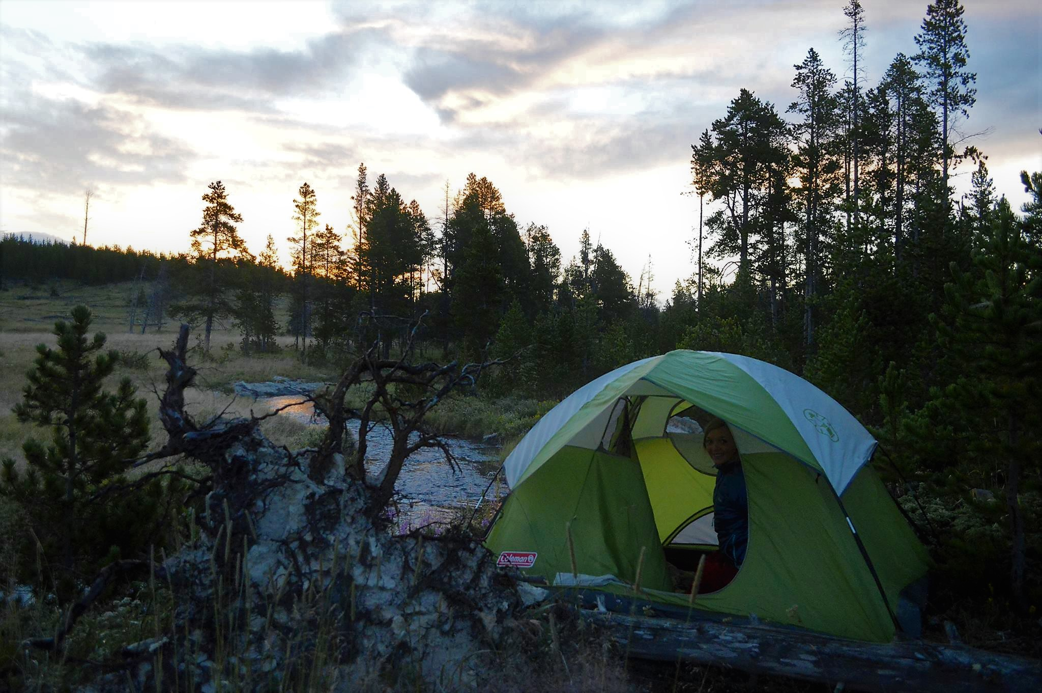 Picture of Wilderness camping Yellowstone National Park USA Road Trip