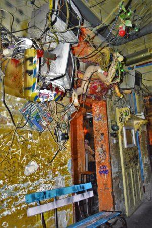 Manakin on wall, Szimpla Kert ruin bar, Budapest, Hungary