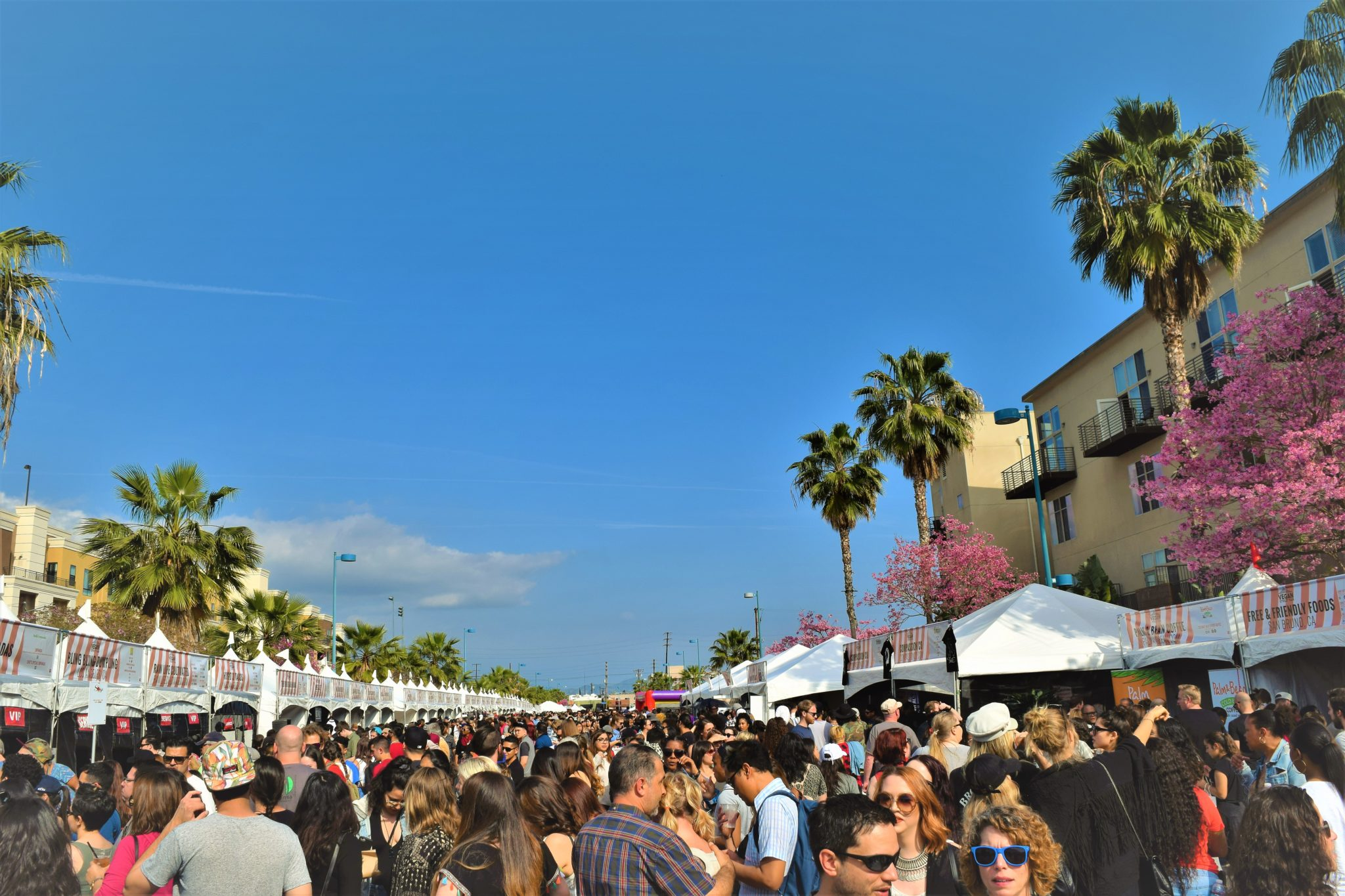 Crowds at the Vegan street fair, Los Angeles