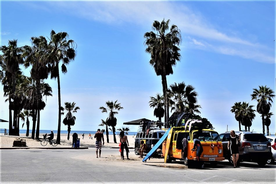 Picture Of Venice Beach La California