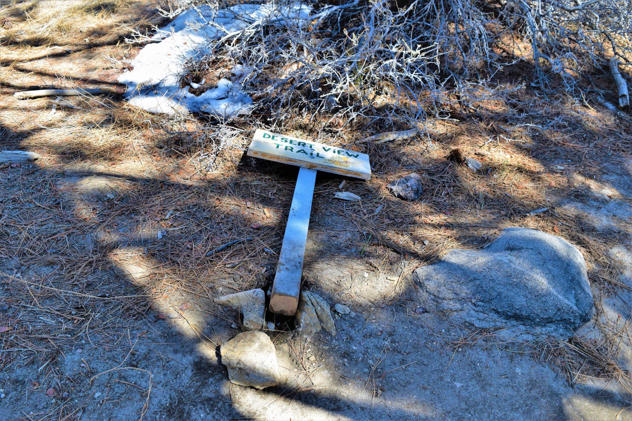 Desert View Trail, San Jacinto State Park, California