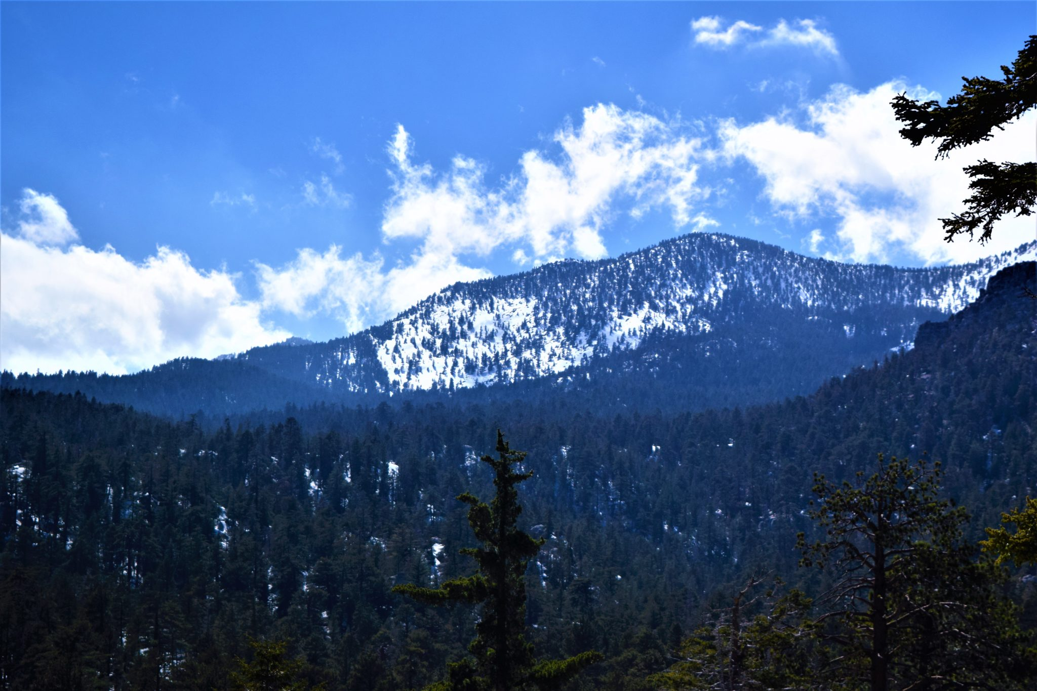 Mount San Jacinto, Palm Springs, California