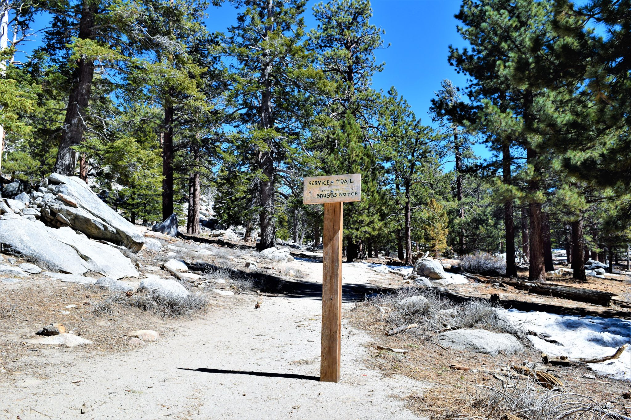 Service trail, San Jacinto State Park, Palm Springs, California