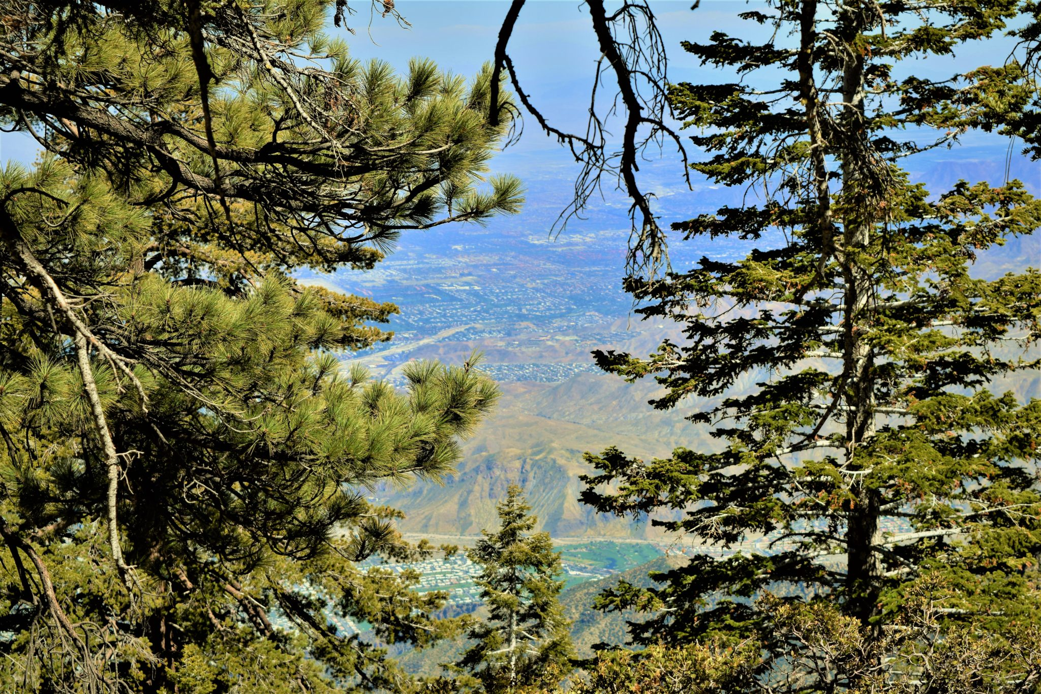 View point desert view trail san jacinto state park, palm springs, california