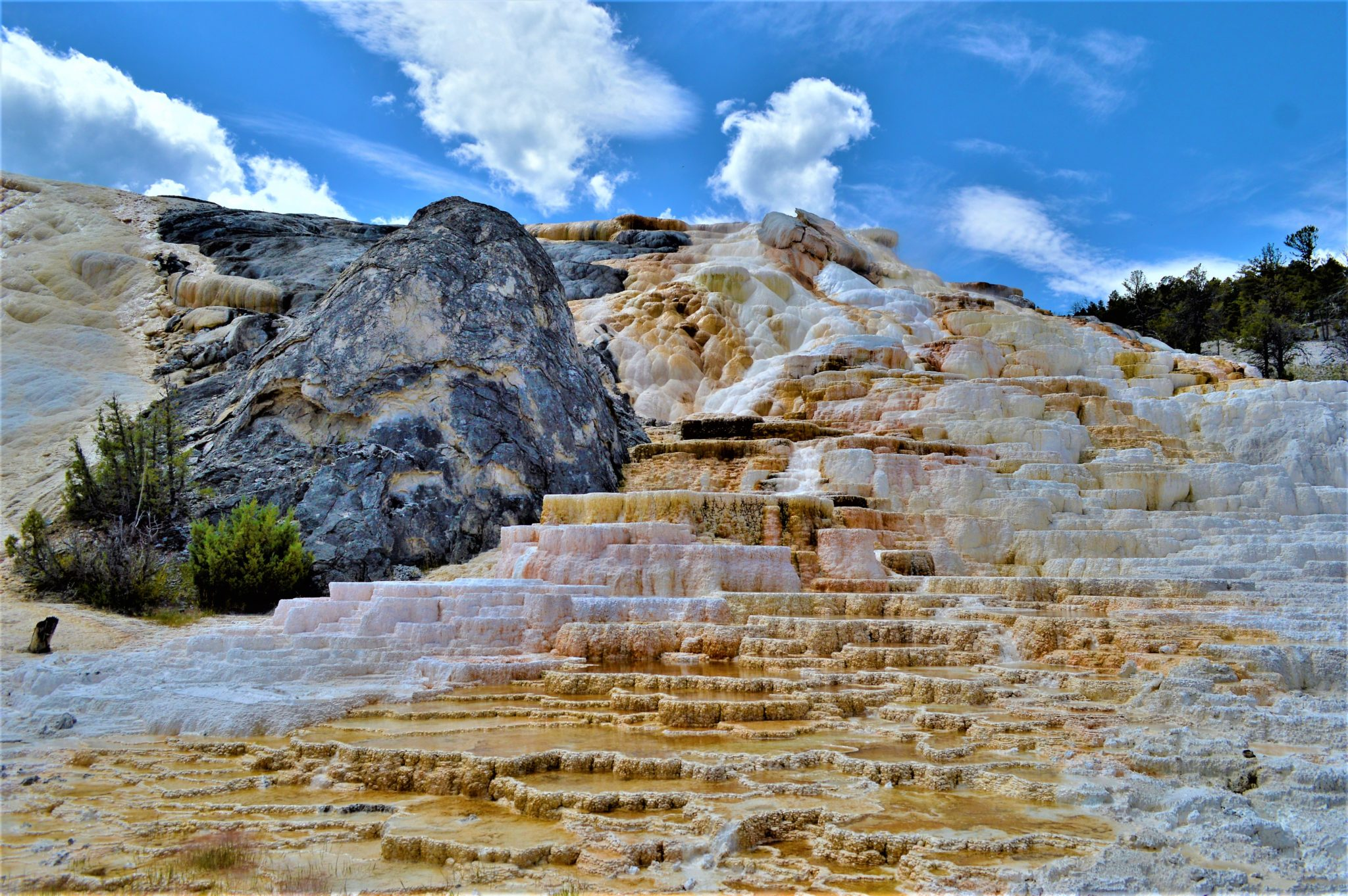 White rock, Mammoth Hot Springs, Yellowstone National Park, USA