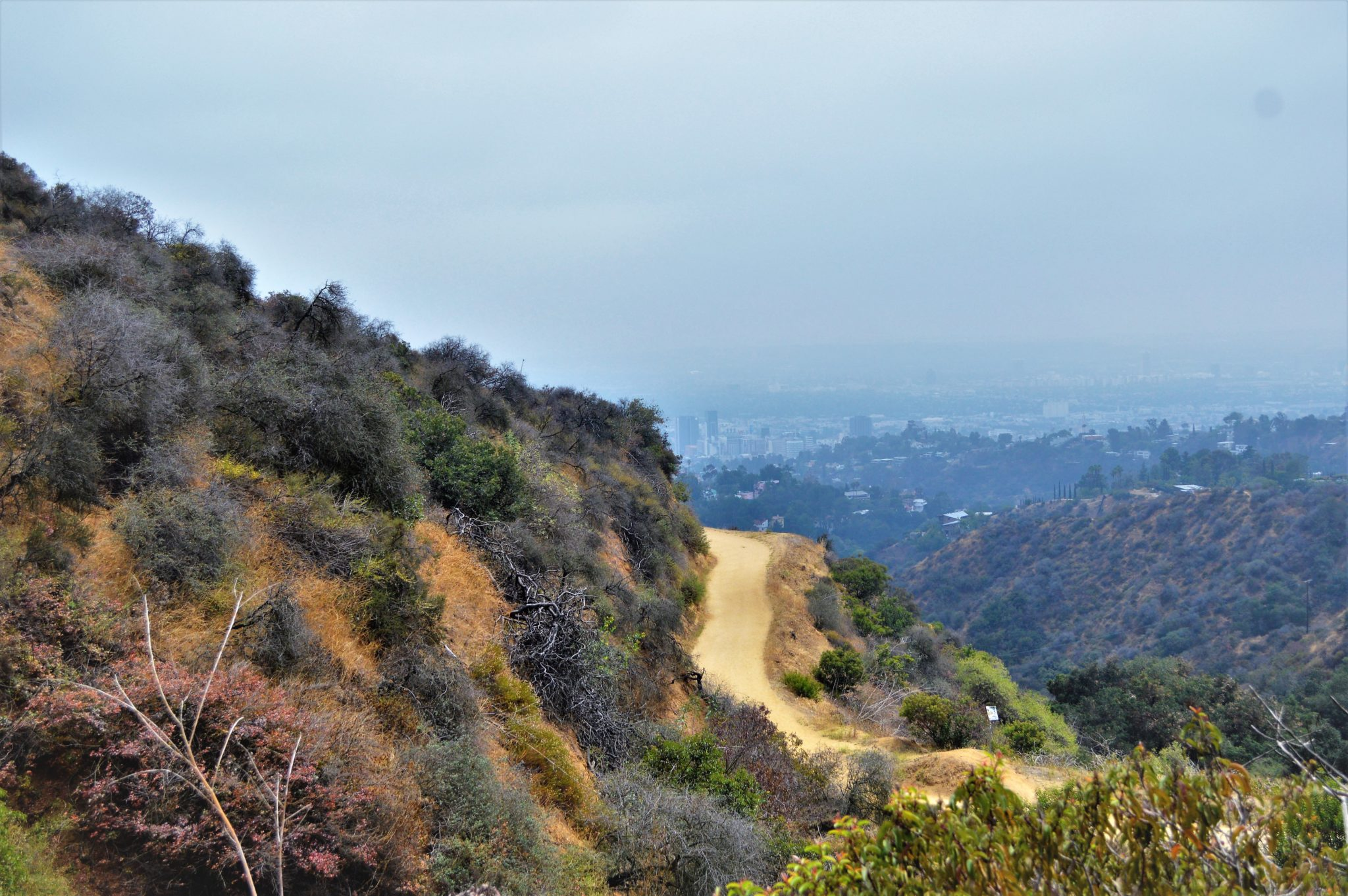 Hollywood Sign hike, california