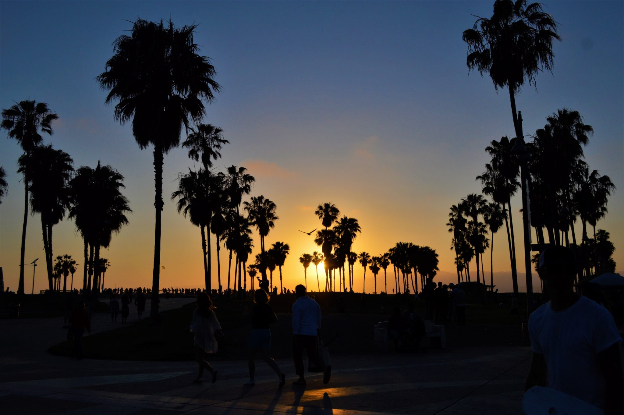 Sunset Venice beach, top things to do in los angeles, California
