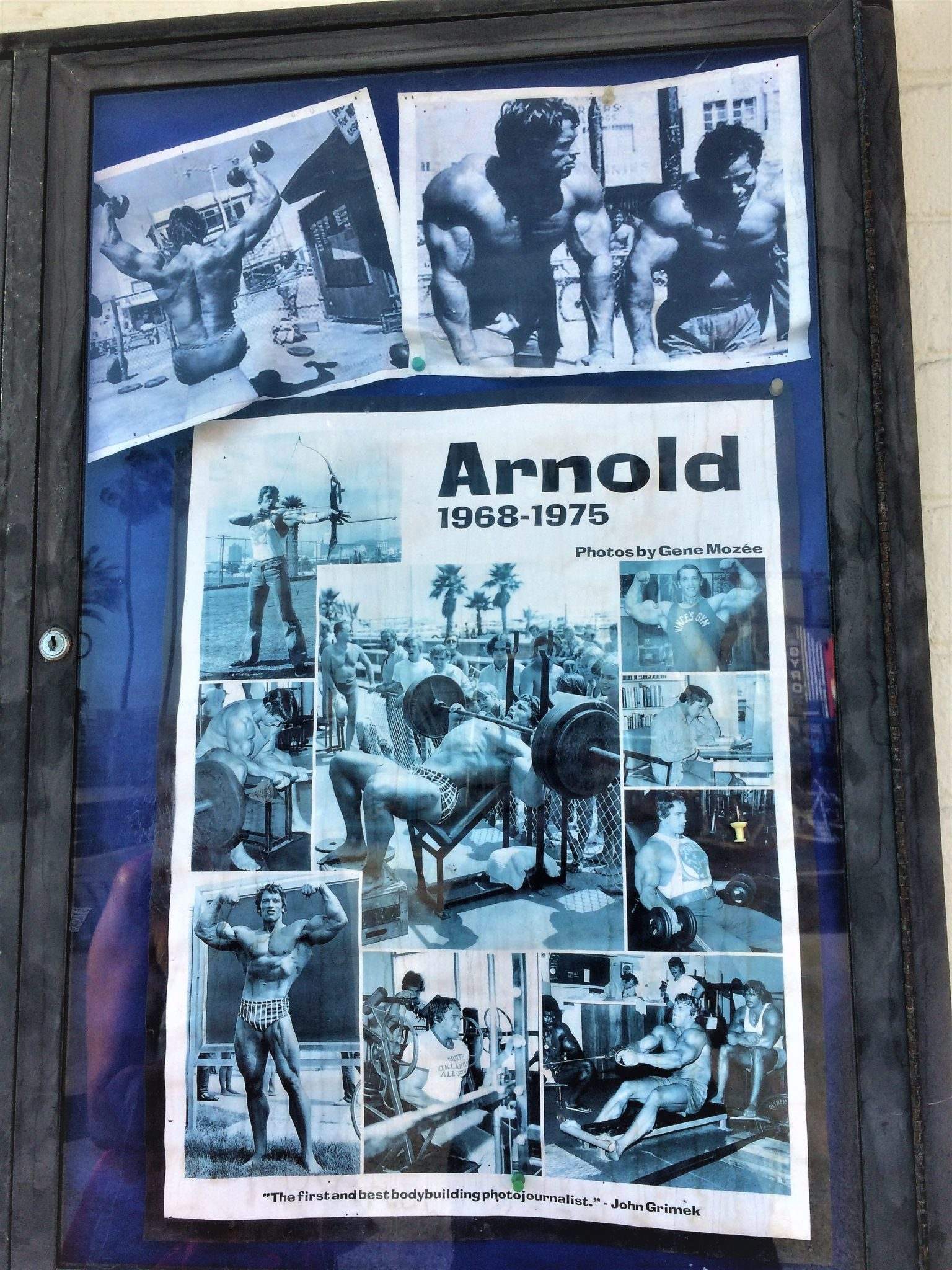 Arnold at Muscle Beach, Venice, Los angeles, california