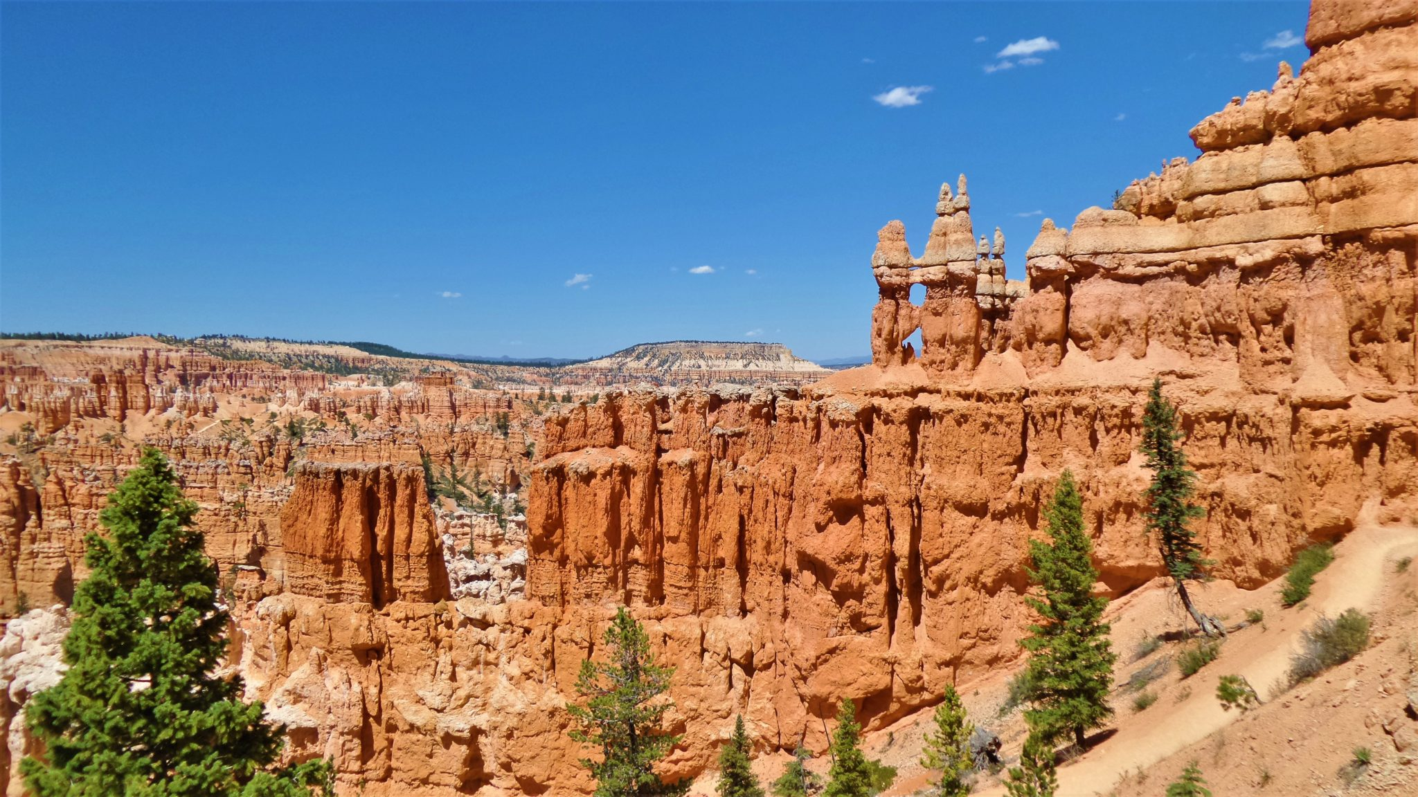 American National Parks Tours