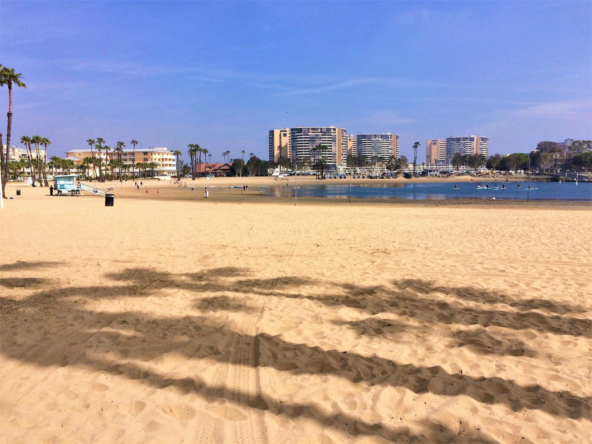 Marina Del Rey Beach, things to do in los angeles