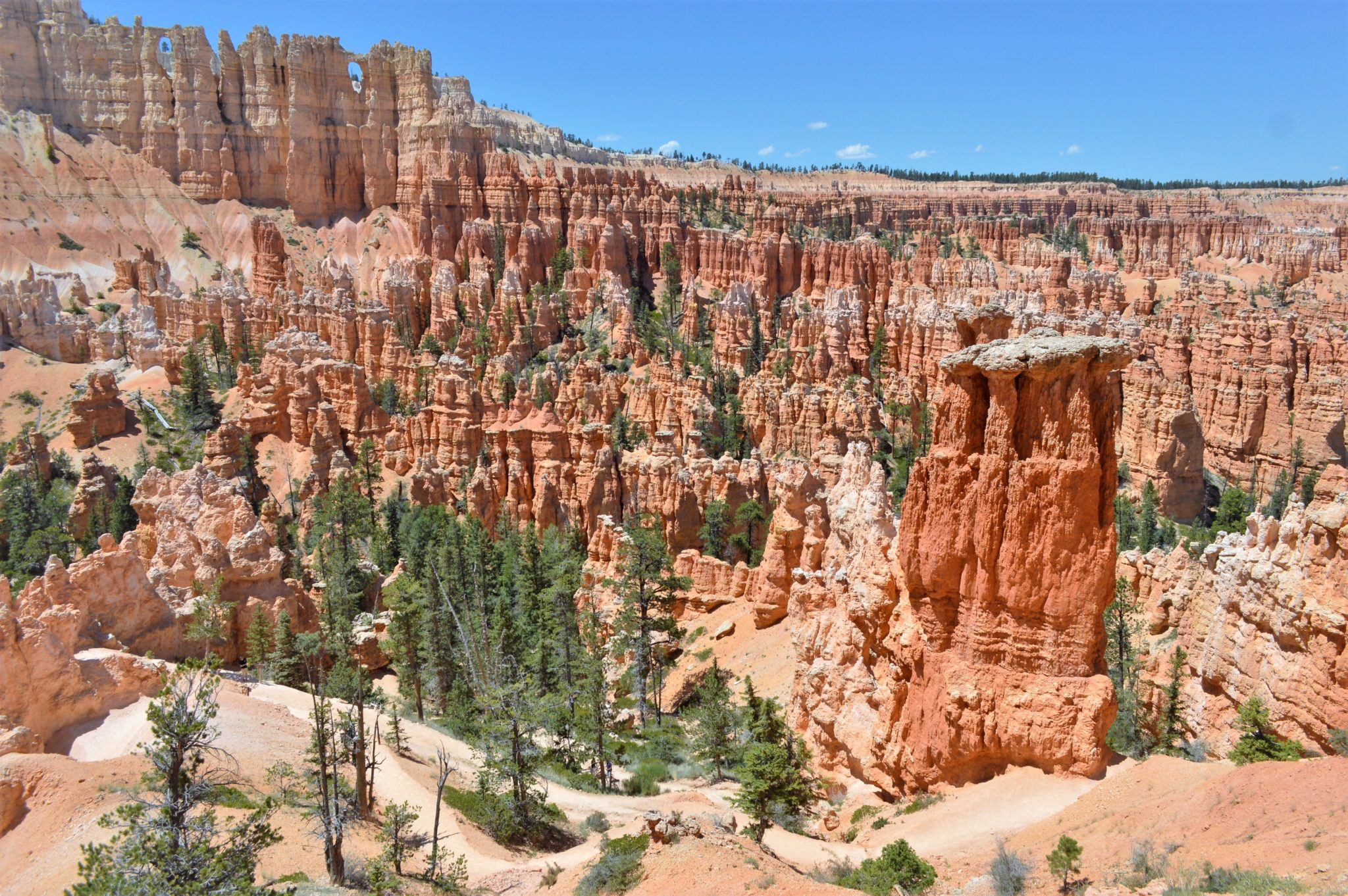 Peek a boo loop trail Bryce Canyon National Park