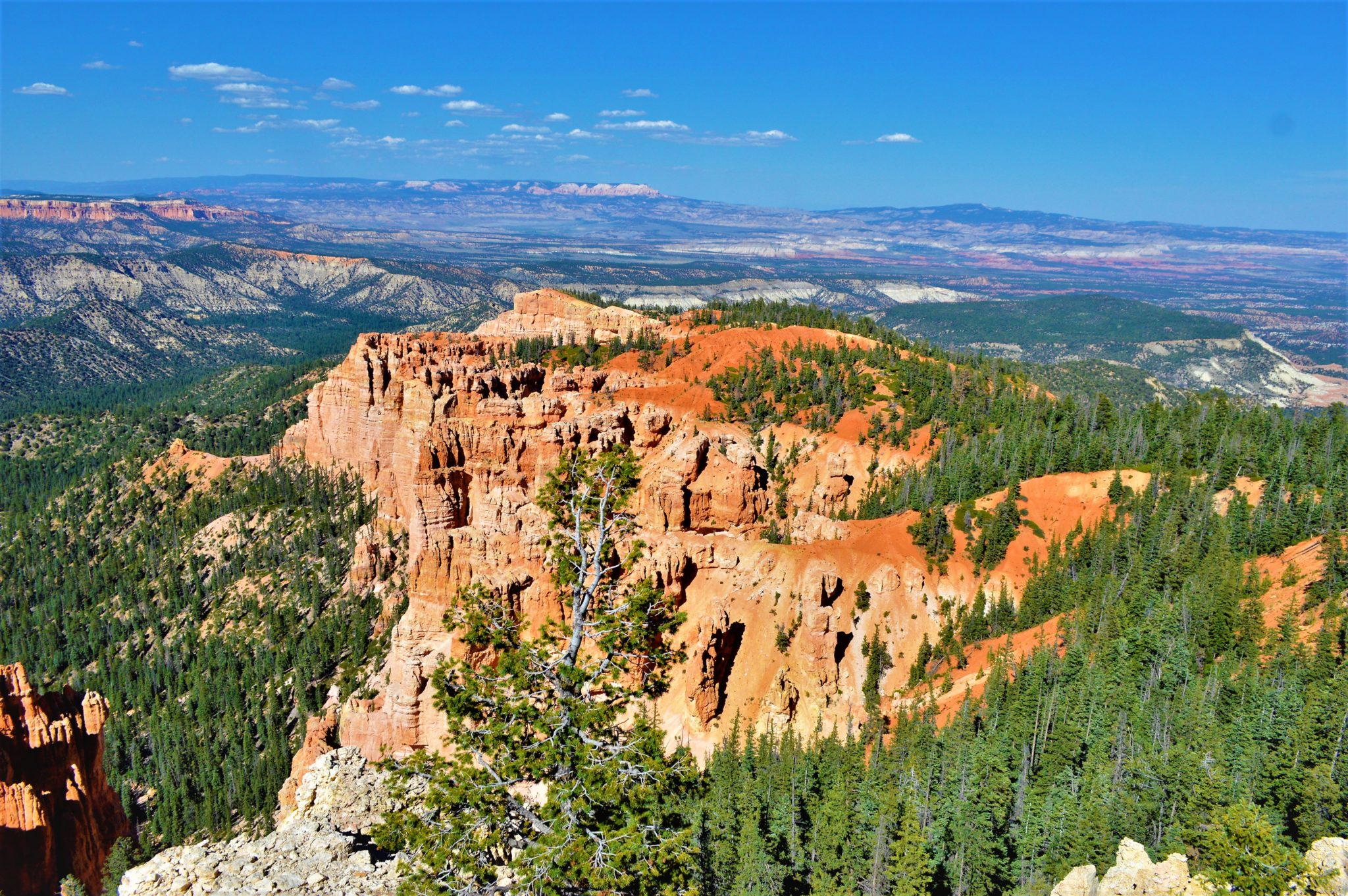 Rainbow point view bryce canyon national park, usa