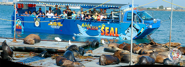 Seal sea and land tours, things to do in San Diego, California
