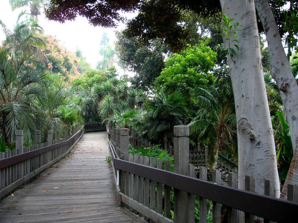Top San Diego Hikes - Balboa Park Trails