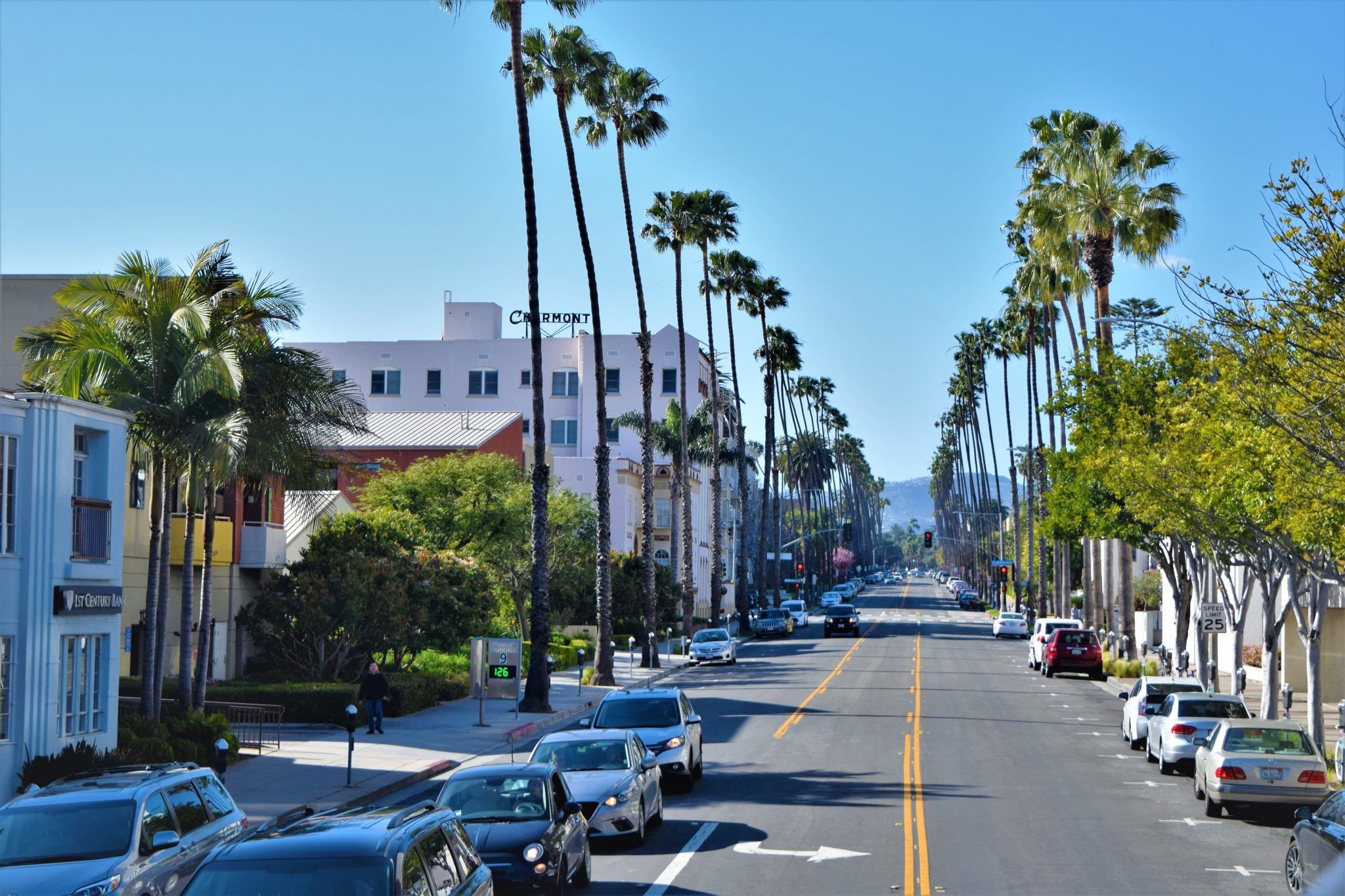 Tree lined streets of la, hop on hop off bus los angeles