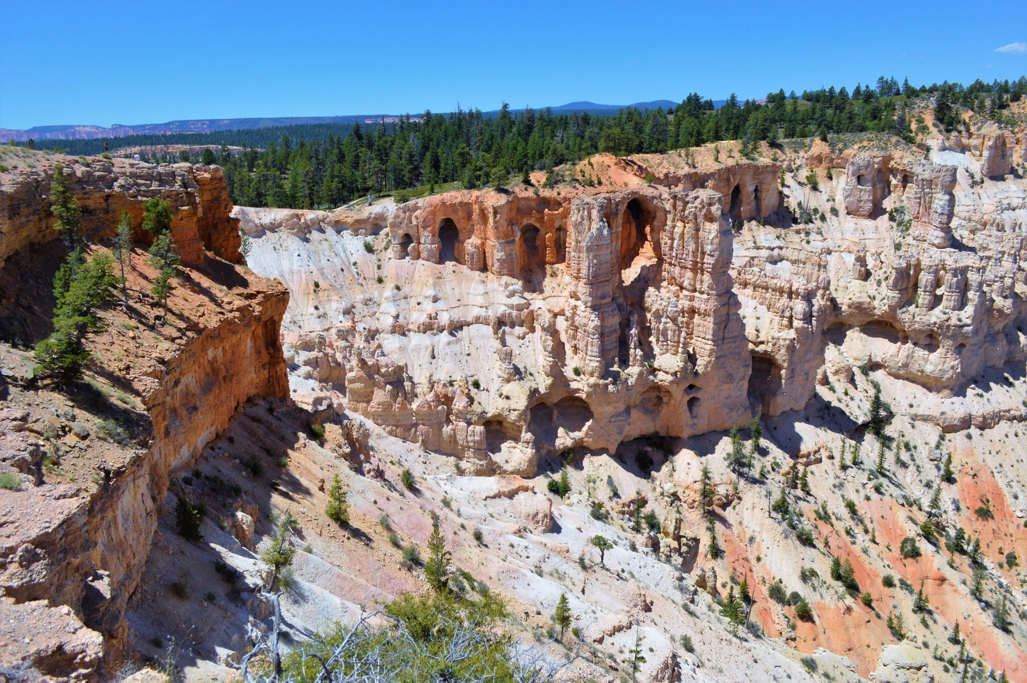 View from Bryce point, things to do in bryce canyon, usa