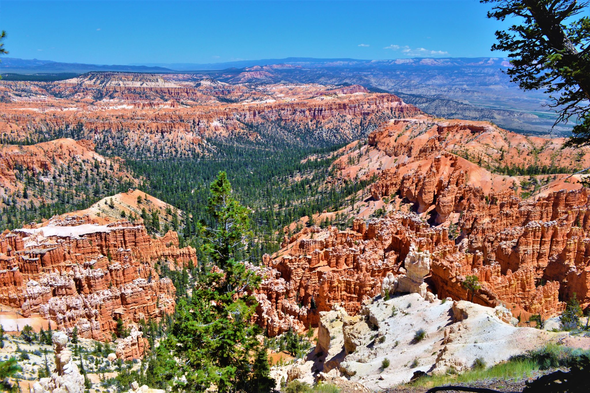 View of Bryce canyon from peek a boo loop trail, usa