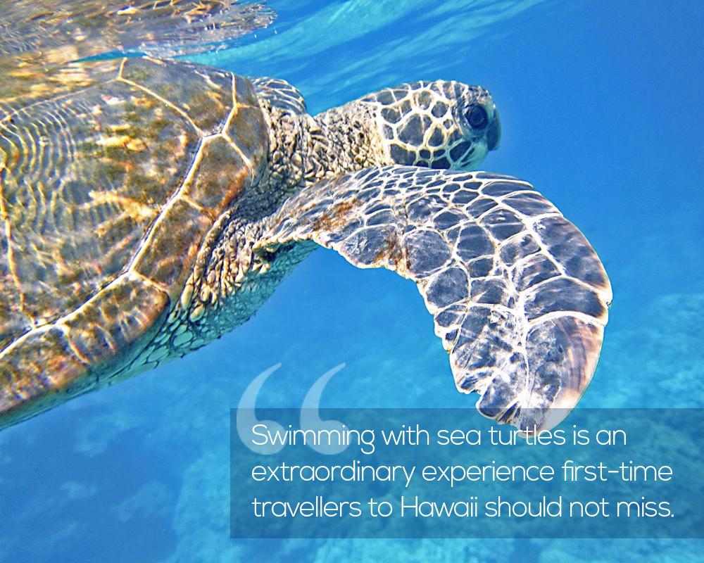 Traveling to Hawaii