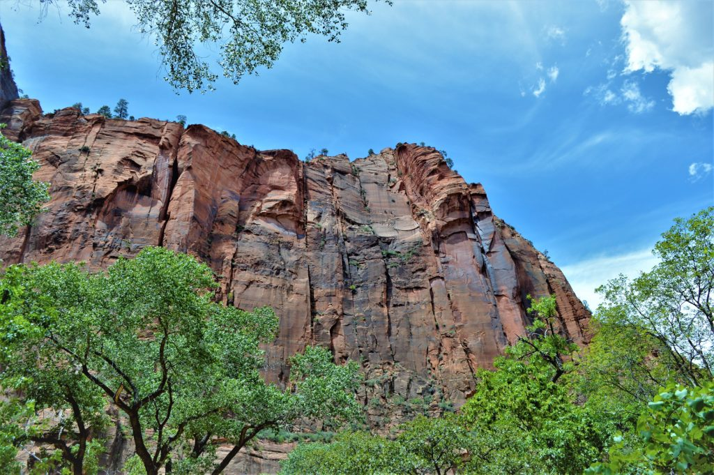 Cliffs on the riverside walk, zion national park, hike the narrows