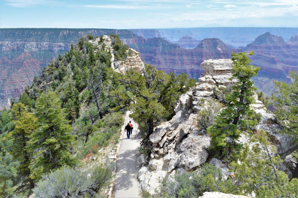 Grand Canyon North Rim view