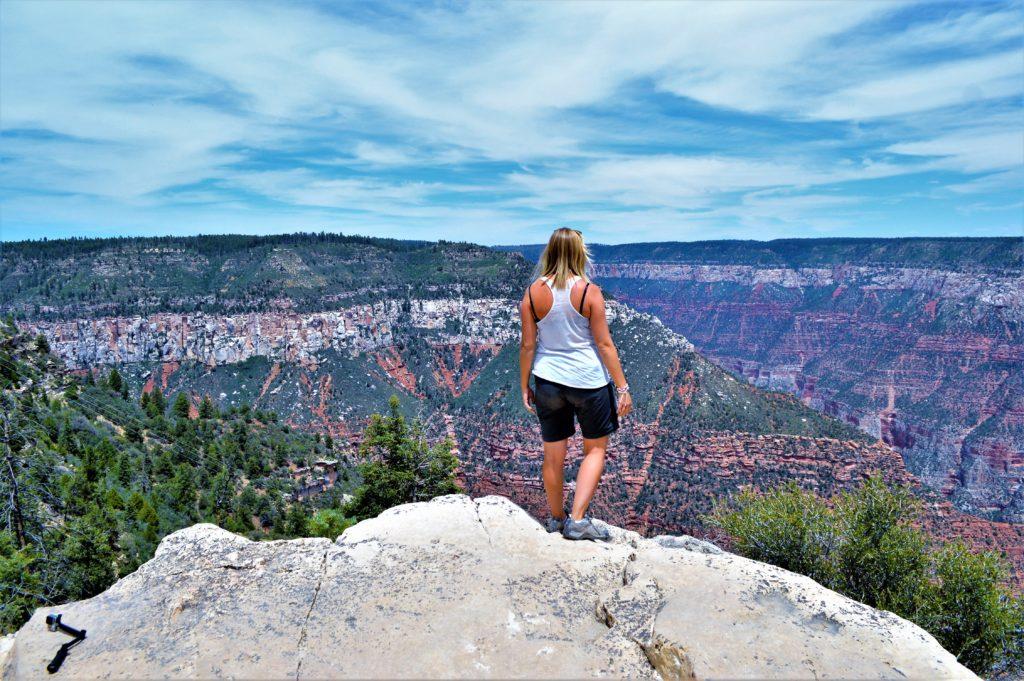 Grand Canyon North Rim viewpoint