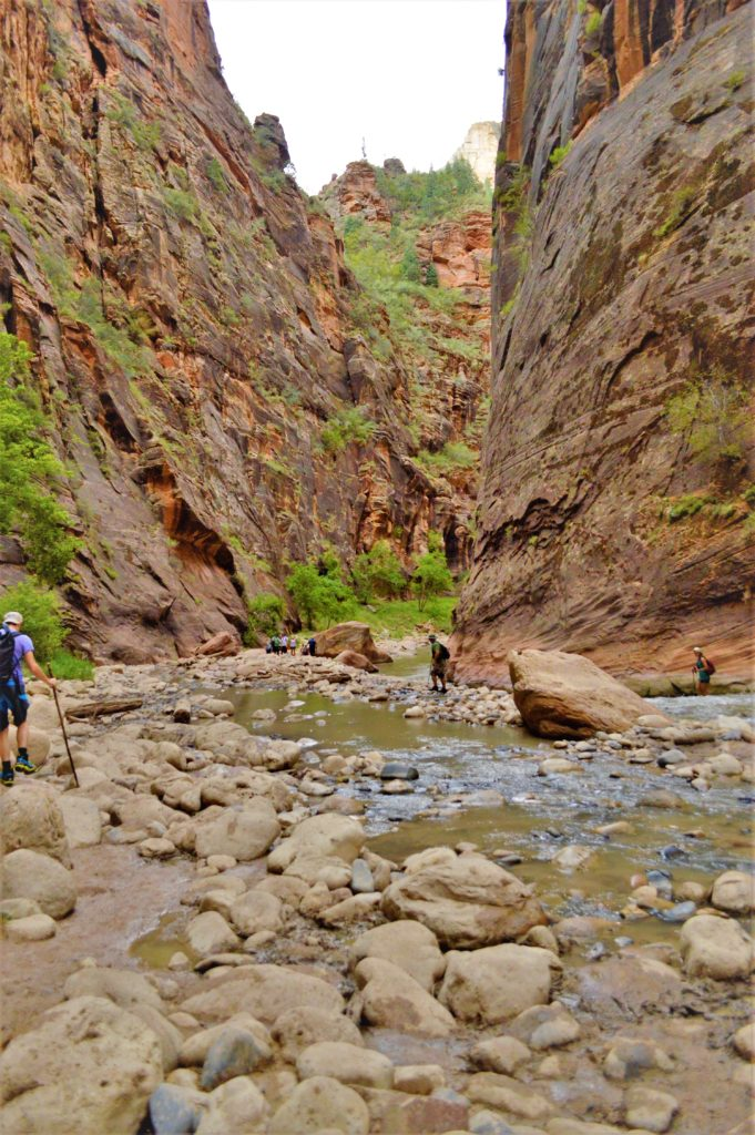 Hikers at the narrows in zion national park