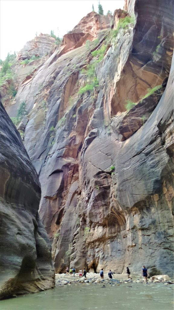 Hikers in the narrows of zion national park