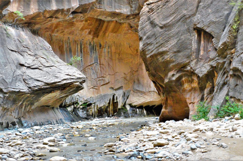 Hiking path on the narrows, Zion National Park