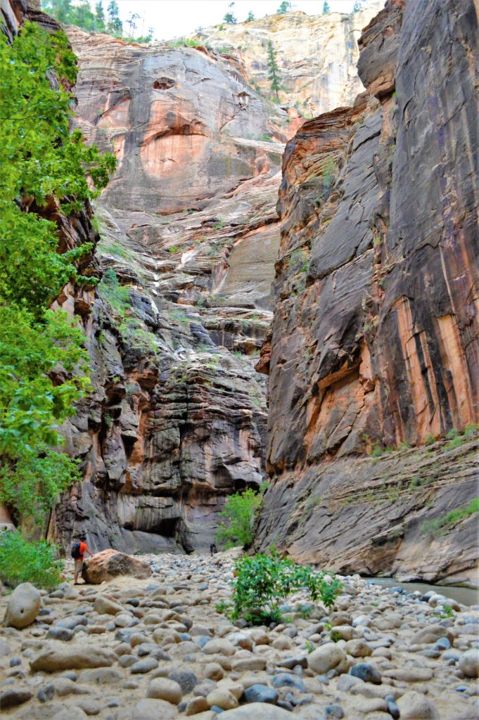 Narrows hike in zion national park