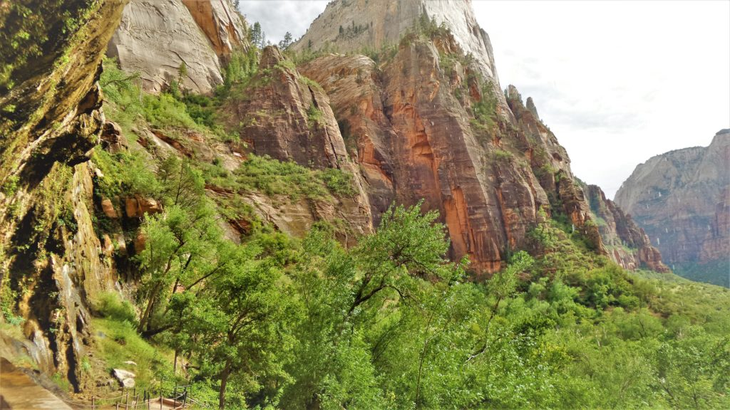 Pathway to weeping rock in Zion National Park, Utah