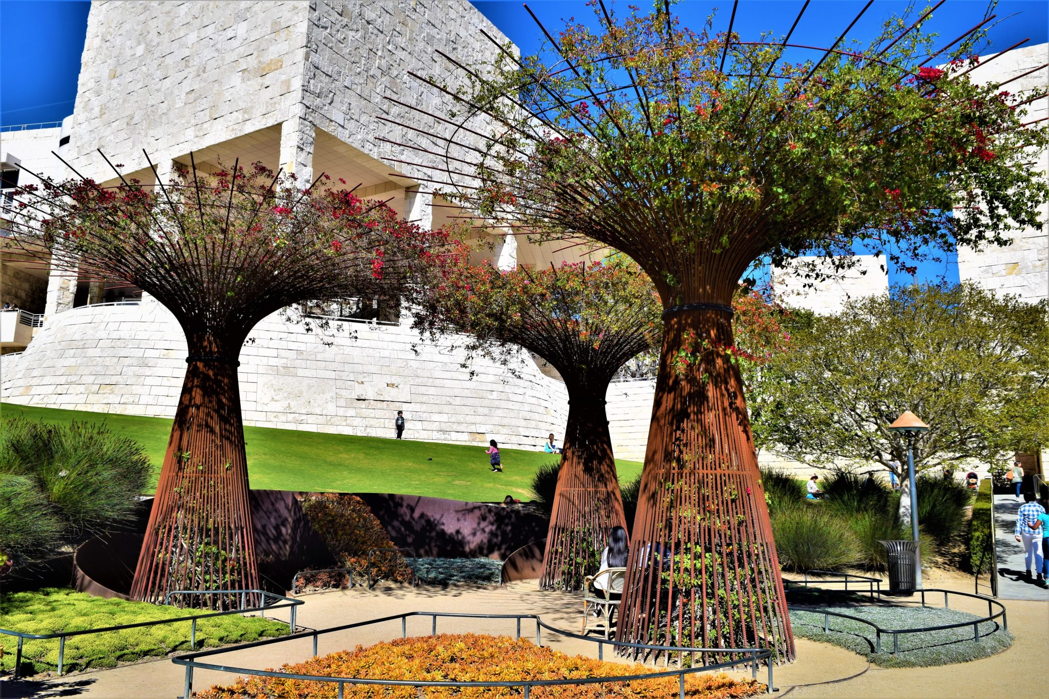 Trees at the Getty Center gardens, los angeles