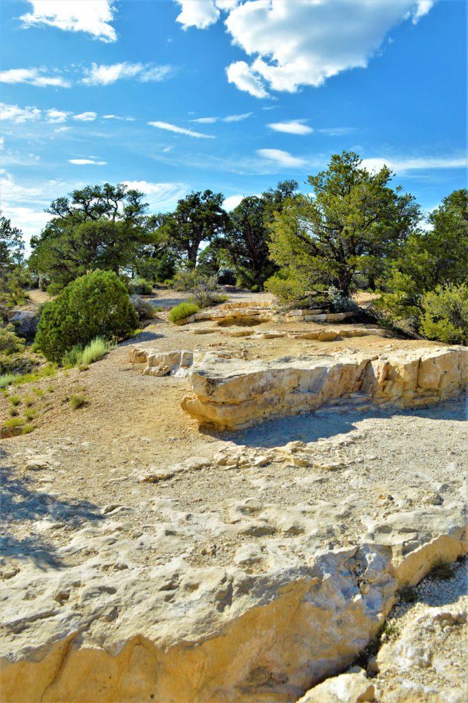 Walking Terrain at Grand Canyon North rim National Park