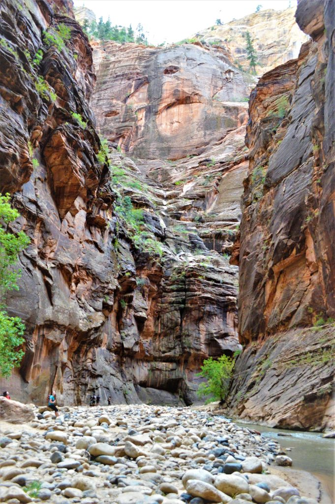 Zion Narrows hike, utah