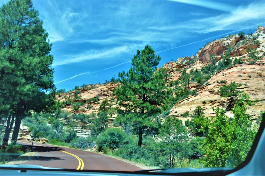Zion national park, road through the canyon, Utah