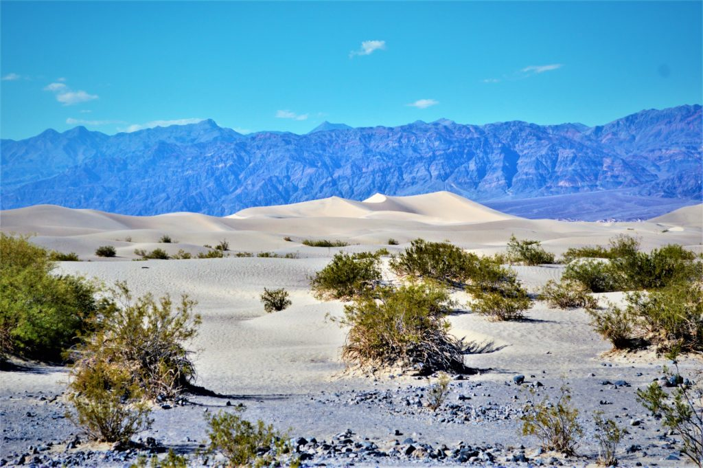 Mesquite sand dunes, death valley national park, nevada, california