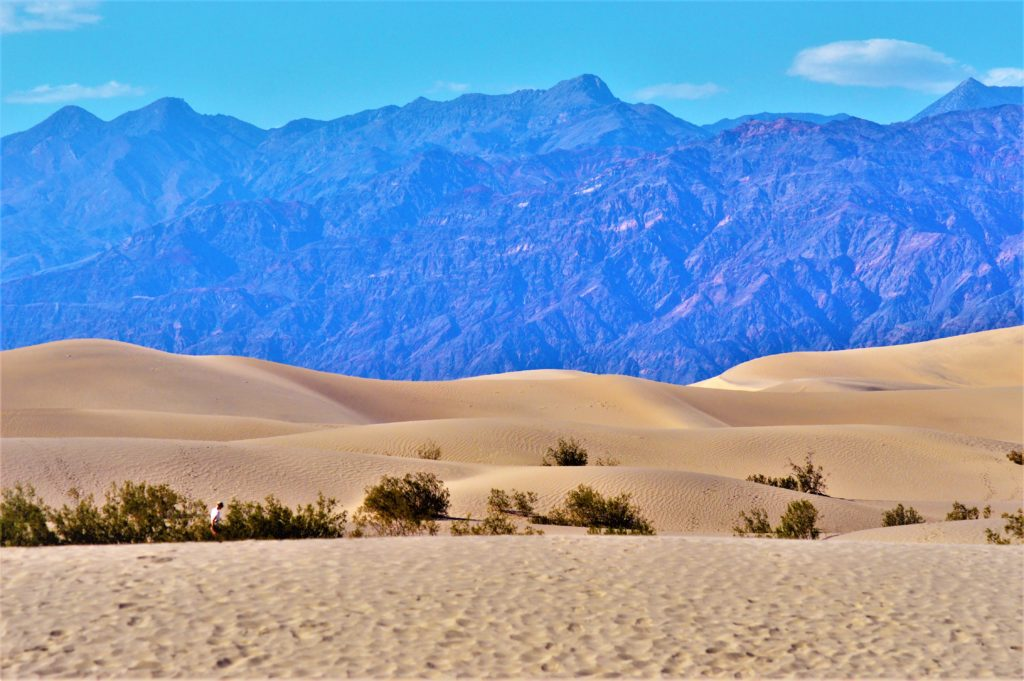 Sand dunes in death valley, nevada, usa