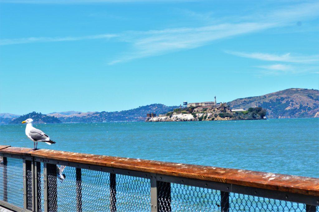 Alcatraz, view from Pier 39, San Francisco, USA