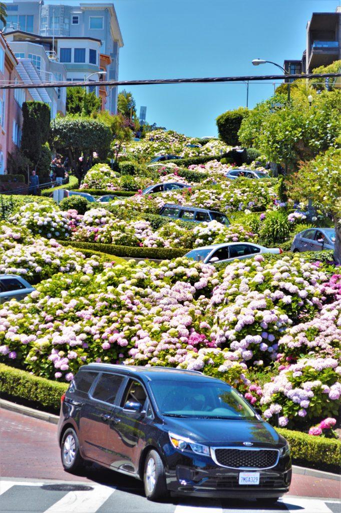 Car driving down Lombard Street, San Francisco, USA