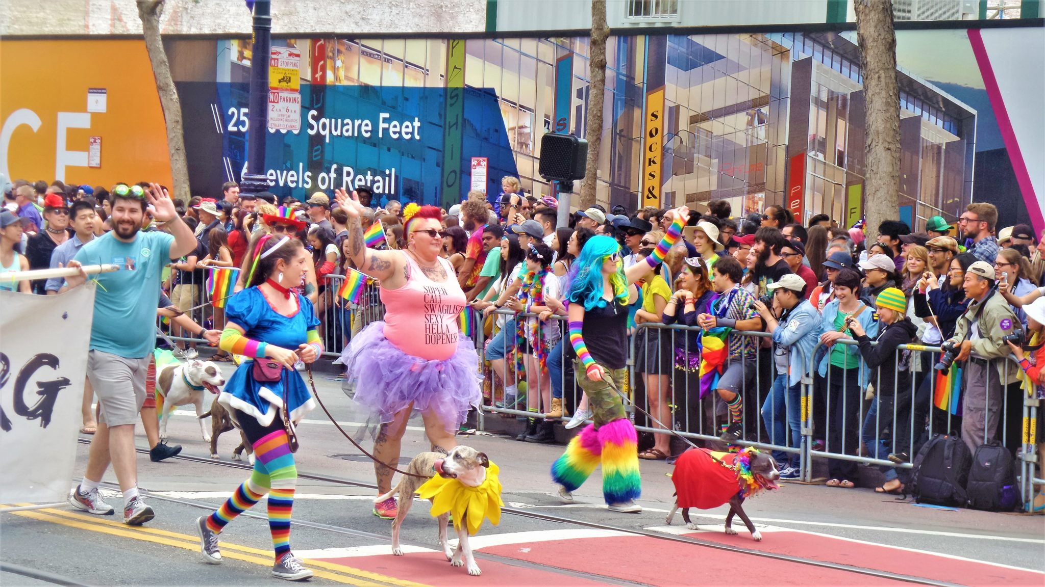 Pride parades celebrate marriage ruling