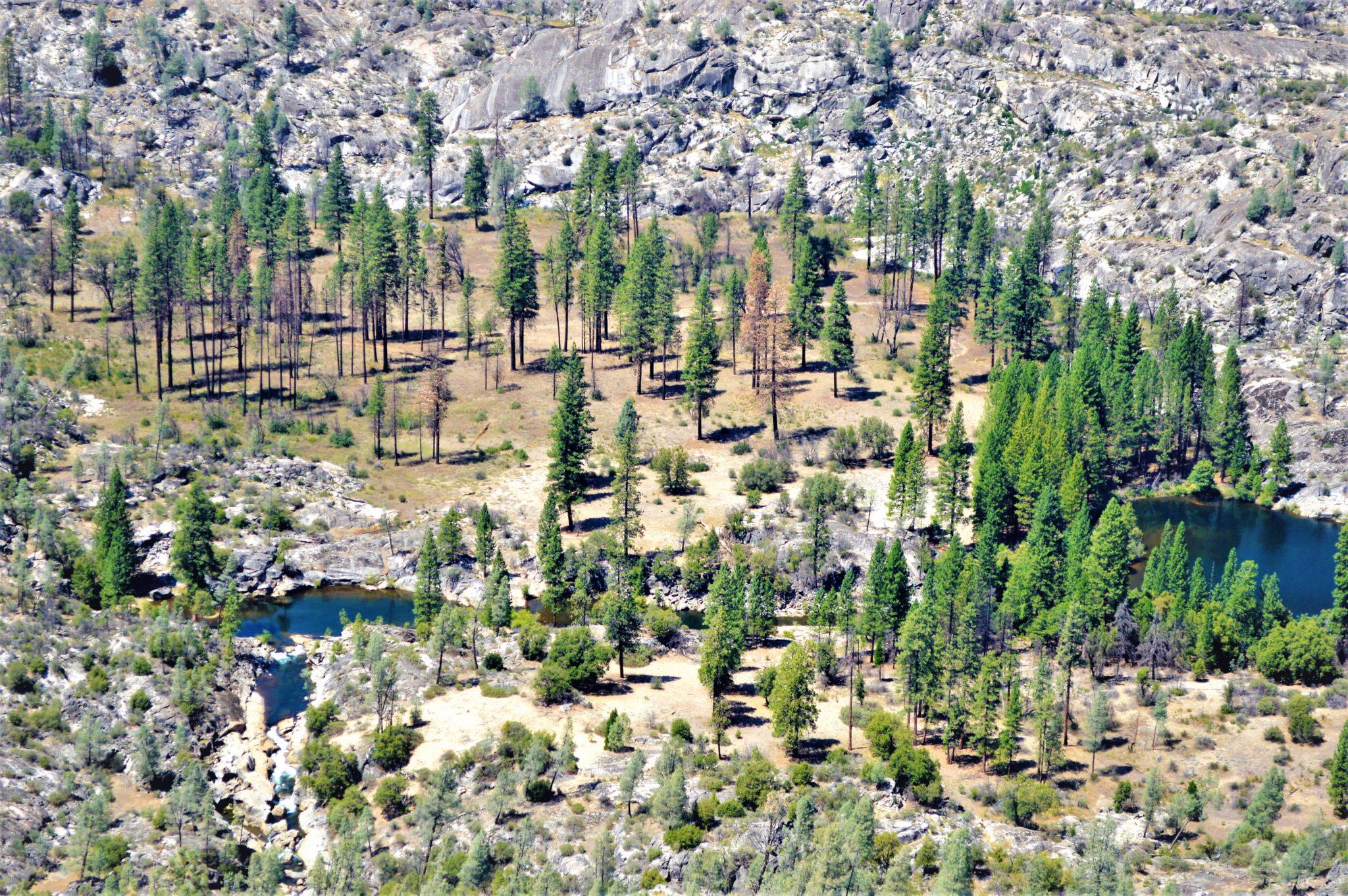 Hetch Hetchy landscape, Yosemite, California