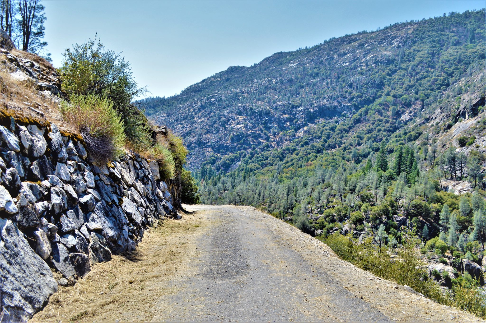 Hiking path, Hetch Hetchy, California