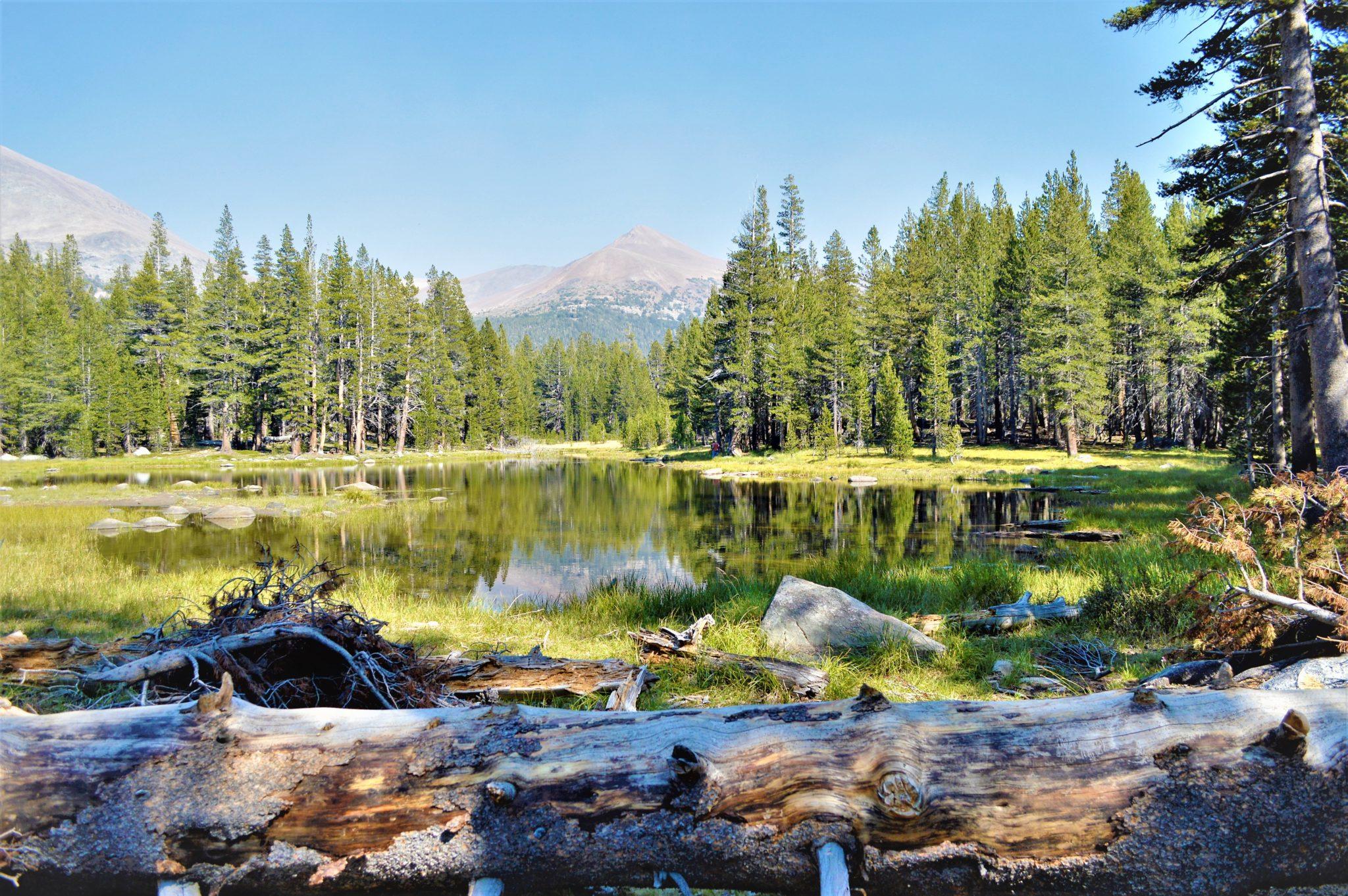 Lake, Yosemite, California