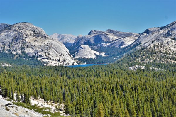 Lake, Yosemite National Park, California